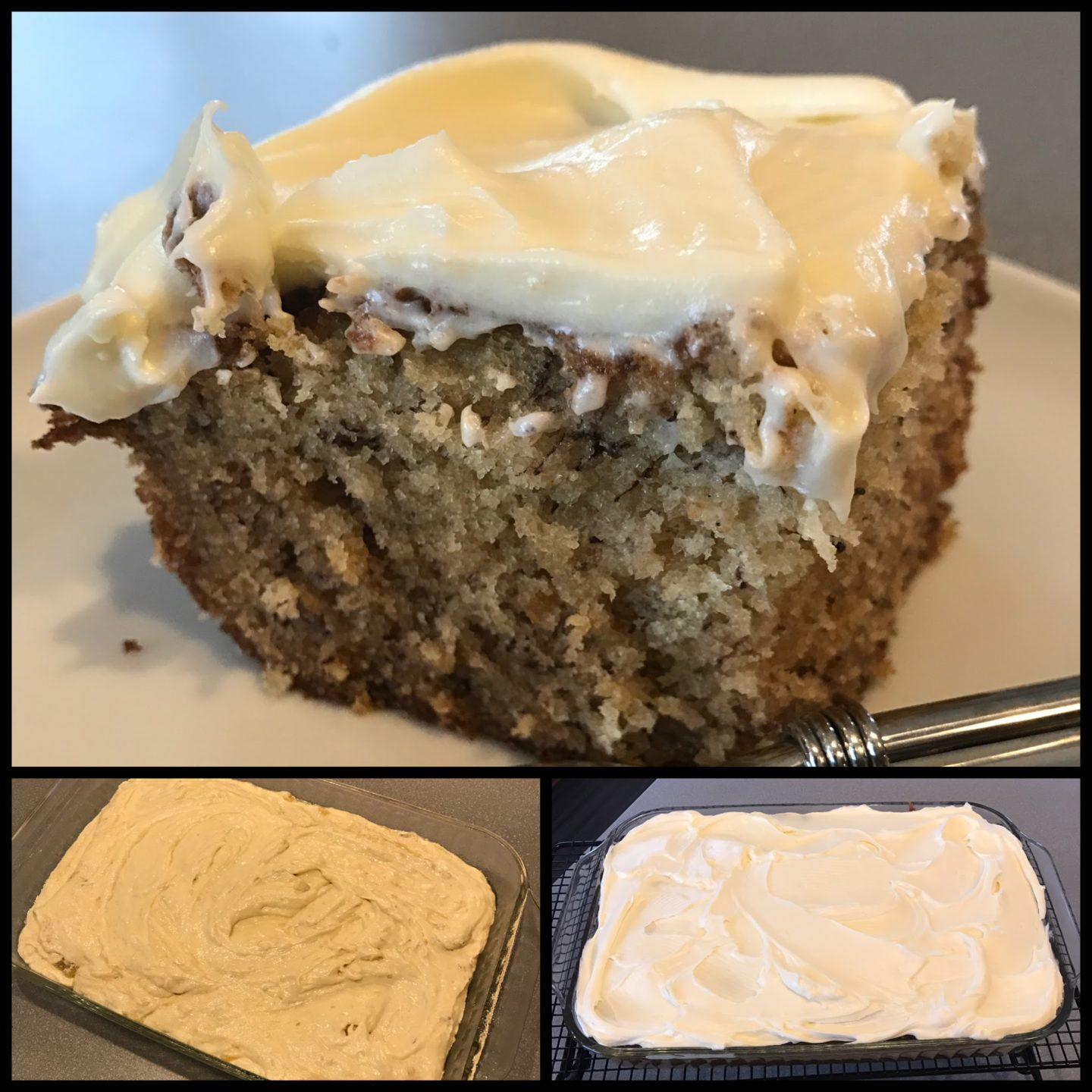 This week's recipes in review…